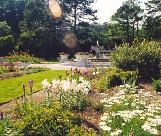 http://siskaaurand.com/wp-content/uploads/2013/01/norfolk-botanical5-640x540.jpg